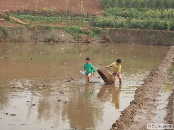 http://si-chuan.nl/wp-content/uploads/Sfeer-uit-Sichuan/09-vissende-jongens-.jpg