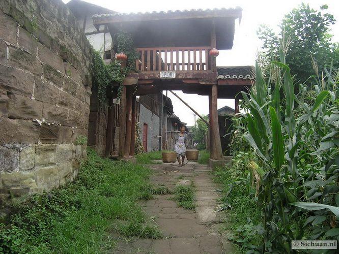 http://si-chuan.nl/wp-content/uploads/Sfeer-uit-Sichuan/35-sfeerbeeld-uit-sichuan-19-.jpg